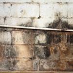 Traitement de l'humidité sur un mur