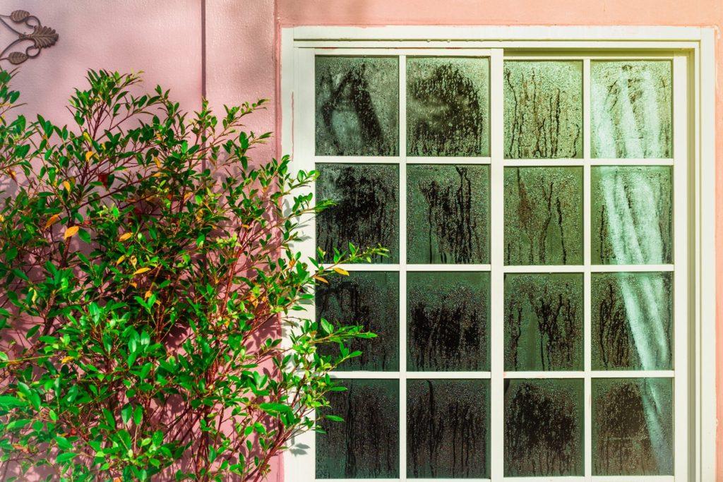 condensation sur vitres : diagnostic humidité
