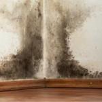Humidité au mur