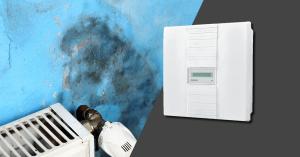 moisissure salle de bain : optez pour un système de ventilation mécanique