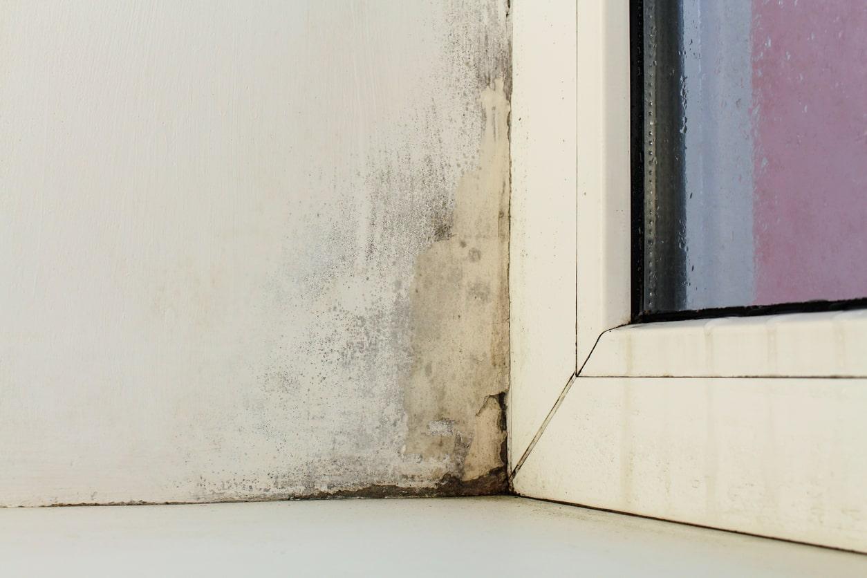 Humidité de condensation : dégats