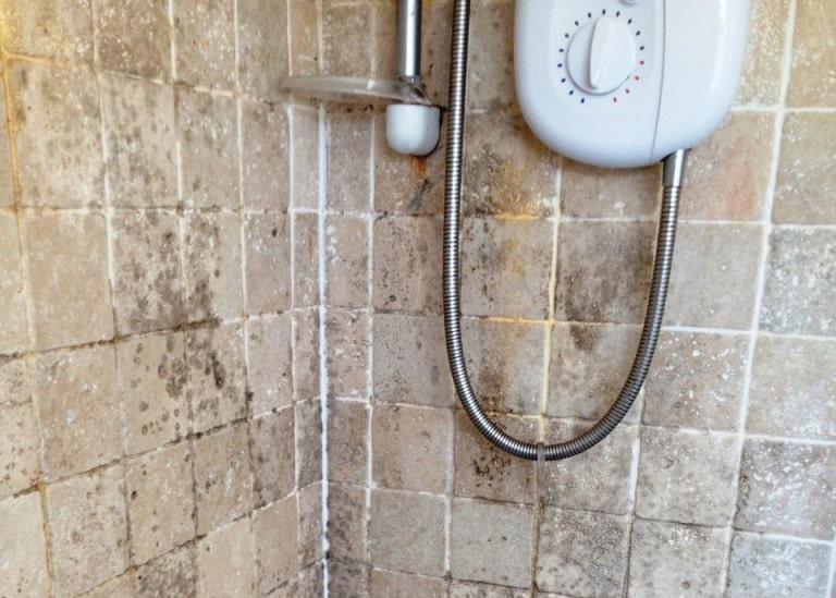 odeur humidité moisissure dans la douche