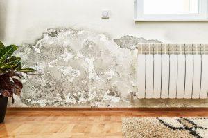 propagation sur le mur