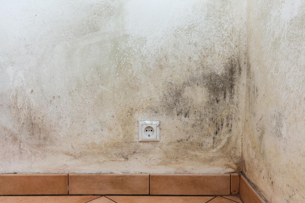 Humidite Qui Remonte Par Le Carrelage ⇒ humidité des murs : causes et prix des traitements 2020